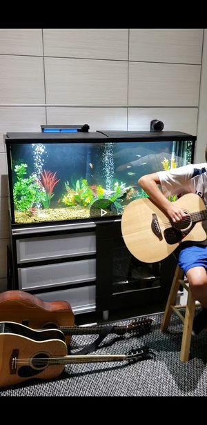 55 Gallon Aquarium, 1 Year Old for Sale in Lexington, KY