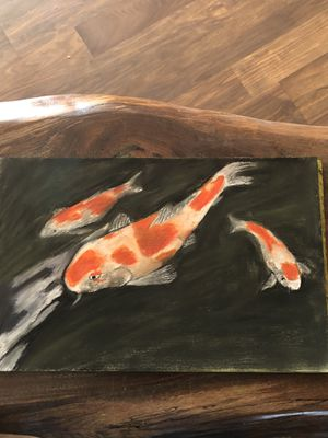 Koi fish for Sale in MD, US