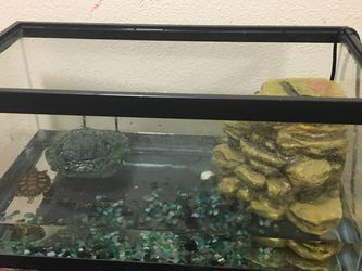 Turtle Tank with Rock filter, Pebbles, Food, And Heating Lamp for Sale in San Jose,  CA