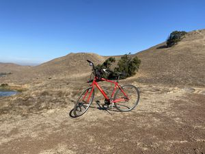 Sirrus Specialized for Sale in Newark, CA