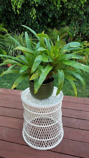 Wicker Bamboo Planter Table for Sale in San Diego, CA
