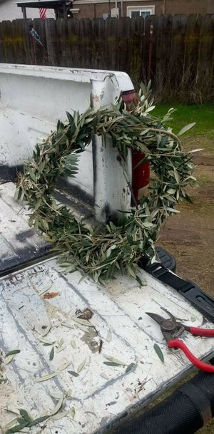 Fresh Natural Olive Branch Wreath for Sale in Turlock, CA