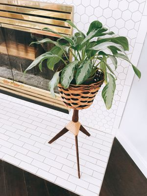 Rattan plant stand -boho MCM for Sale in Peoria, AZ