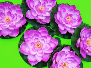Set of Six 11in. Floating Flowers for Weddings, Pools, Baths, etc for Sale in Sacramento, CA