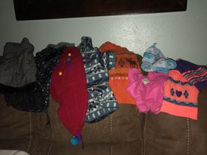 Bundle of items for a small-medium size dog for Sale in Victoria, TX
