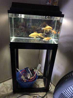 Pecera con 4 pescados for Sale in Dallas, TX