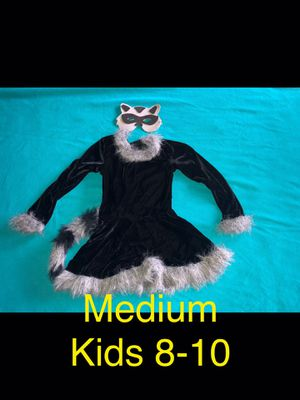 Raccoon costume for Sale in St. Peters, MO