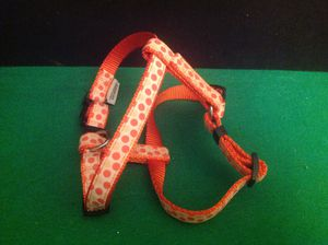 American Kennel Club AKC Orange & White Polka Dot Nylon Dog Harness Brand New for Sale in Tarpon Springs, FL