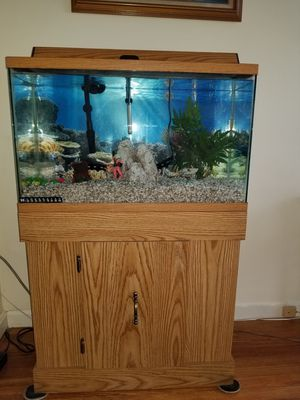 29 gallon fish tank w/ accessories for Sale in Cambridge, MA