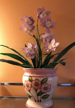 Flower for Sale in Lexington, KY