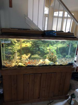 Aquarium 75 gallon big filter lights all decorative item with it for Sale in Austin, TX