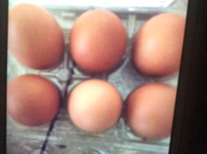Organic brown eggs for Sale in McLean, VA
