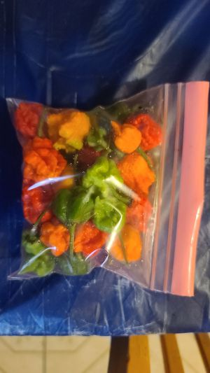 Carolina Reapers 1 oz. for Sale in Irving, TX