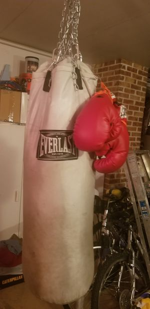 Everlast punching bag with boxing gloves for Sale in Elmhurst, IL