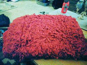 red fur throw blanket for Sale in Burnsville, MN
