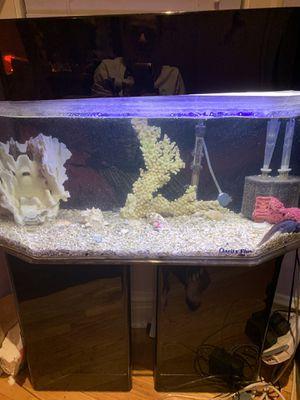 acrylic 50 aquarium tank for Sale in Chicago, IL