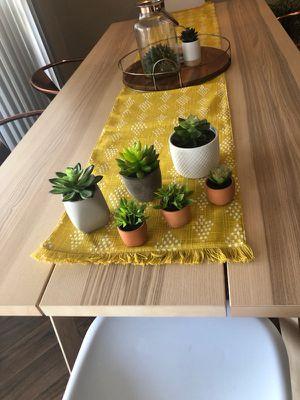 Fake succulents for Sale in Dallas, TX