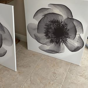 Pictures - 3'x3' for Sale in Brandon, FL