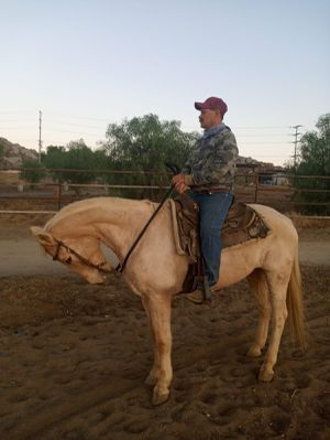 SILLA PARA CABALLO for Sale in Moreno Valley, CA