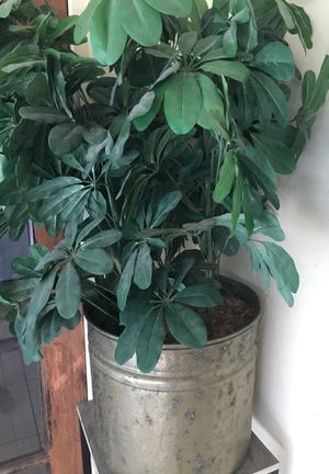 2 1/2 ft fake plant in bronze planter $10 for Sale in Casselberry, FL