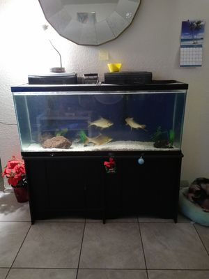 Fish tank aquarium for Sale in Phoenix, AZ