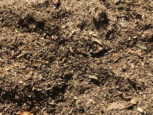 Mulch for Sale in Parsippany-Troy Hills, NJ