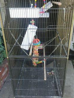 Bird cage with cover for Sale in Fullerton,  CA