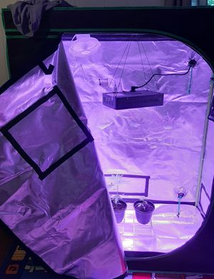 Grow Tent for Sale in Dowagiac, MI