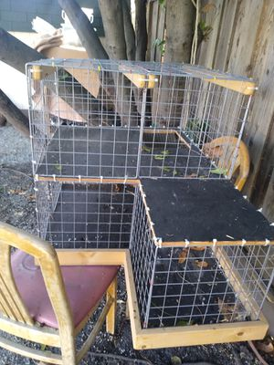 Big guinea pig/rabbit case for Sale in Hayward, CA