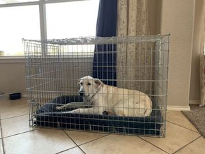 Large 42' dog crate for Sale in McKinney, TX