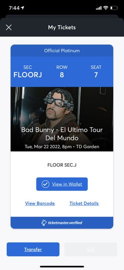 Bad Bunny  for Sale in Adelphi, MD