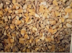 Chicken duck or poultry grain feed 35lb for Sale in Vienna, VA