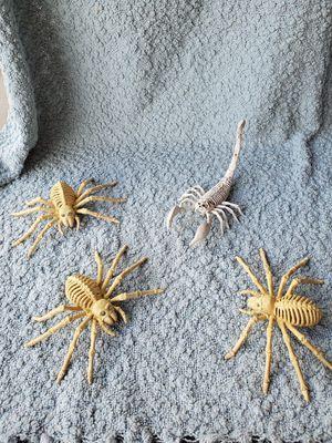 Skeletal spiders for Sale in Ruskin, FL