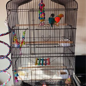 Love birds And Cage for Sale in Arvin, CA