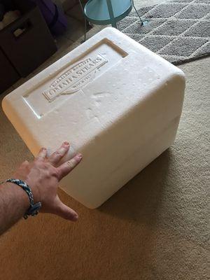 Styrofoam cooler for Sale in Gresham, OR