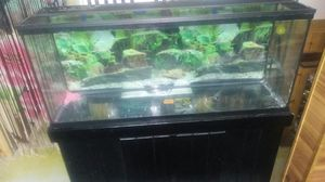 55 gallon aquarium for Sale in Darien, IL