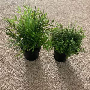fake house plants for Sale in Corona, CA