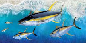 49x24. The Chase Beautiful Tuna on Wood Art for Sale in Port St. Lucie, FL