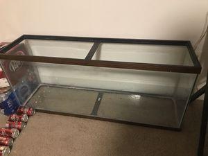 Big fish tank aquarium reptile for Sale in Midlothian, VA