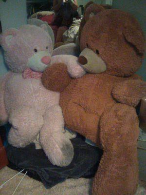 HUGE Bears for Sale in Salt Lake City, UT