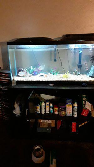 50 gallon fish tank for Sale in Fresno, CA