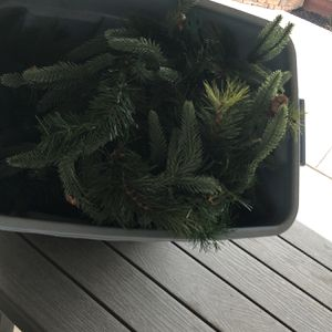 Free Garland With Lights for Sale in Livermore, CA