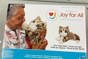 Hasbro's comfort companionship for Sale in Waterbury, CT