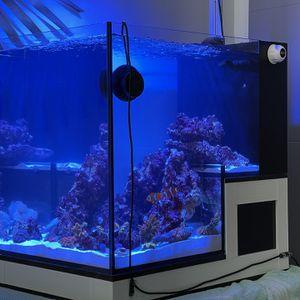 Concept Pro 20 AIO Peninsula Aquarium Fish Tank for Sale in El Segundo, CA