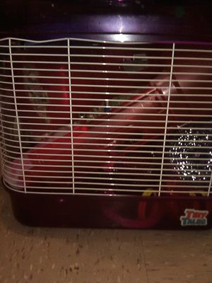 Hamster cage with accessories plus bedding for Sale in New York, NY