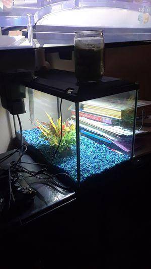 10 gallon fish tank kit for Sale in Whittier, CA