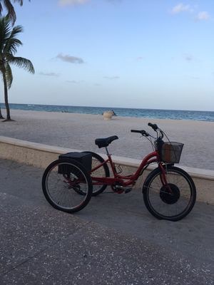 3 wheeler electric for Sale in HALNDLE BCH, FL