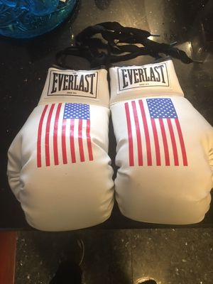 Everlast USA boxing gloves for Sale in Chicago, IL