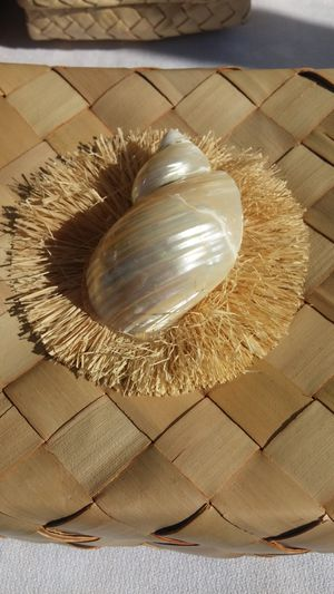 Lauhala box with shell for Sale in Stockton, CA