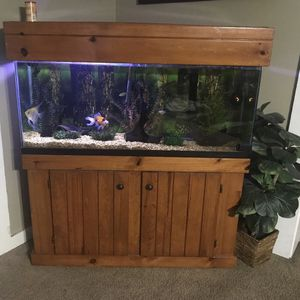 55 Galons Fish Tank for Sale in Winter Haven, FL